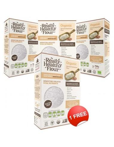 HealthPoint Mastering Acupuncture eBook (German Version) - Akupunktur Meistern